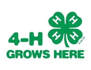 Cover photo for Edenton Eagles 4-H Club Update