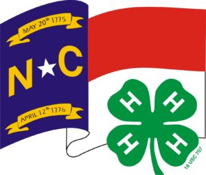 Cover photo for 2017 State 4-H Council Conference
