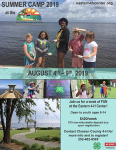 Cover photo for 4-H Summer Camp